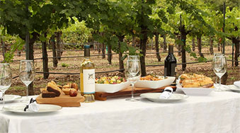 napa-valley-daily-limousine-wine-tours-3